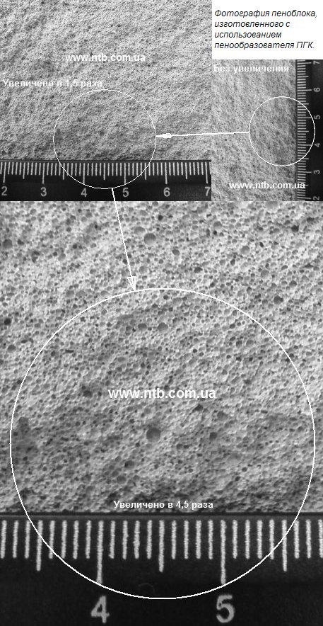 Пенообразователь ПГК — Фотография ячеек пенобетона